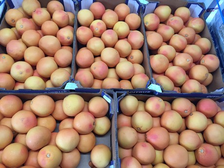 China: Poor market for South African grapefruit
