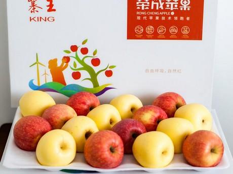 Venus gold una mela giapponese pronta alla coltivazione - Mele fuji coltivazione ...